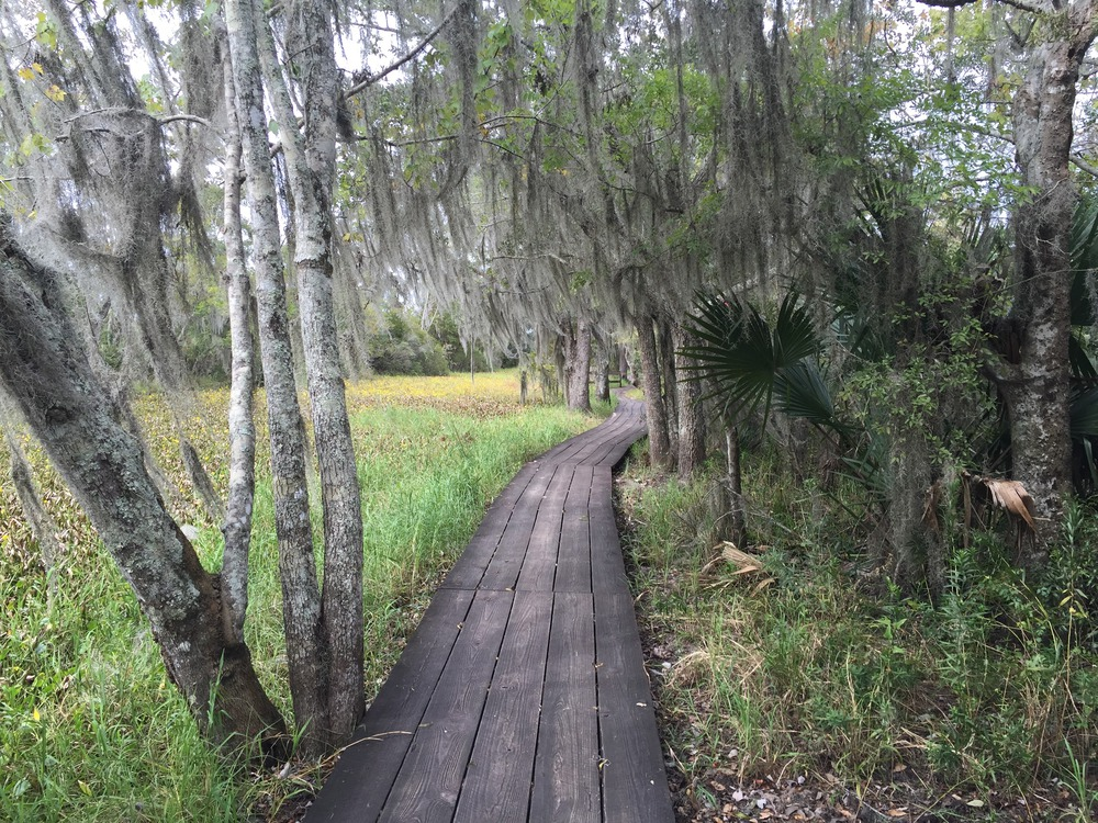 boardwalk_jean_lafitte-resized
