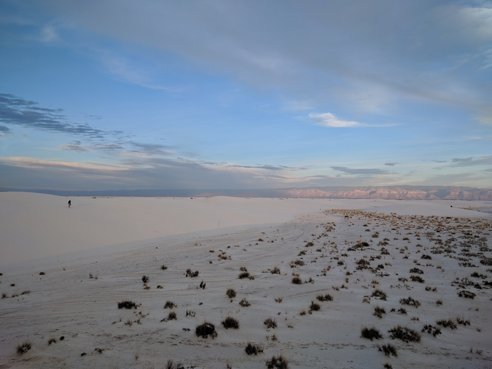whitesands_rosie_in_distance-resized-1